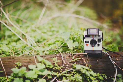 Why Instagram is Winning the Fight for Customer Engagement