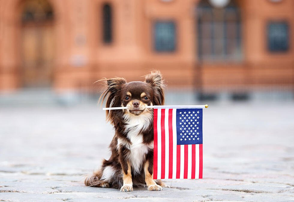 4th of July Emails: 13 That Prove Holiday Marketing Doesn't Have to Be Hard