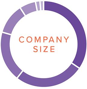 Company-Size
