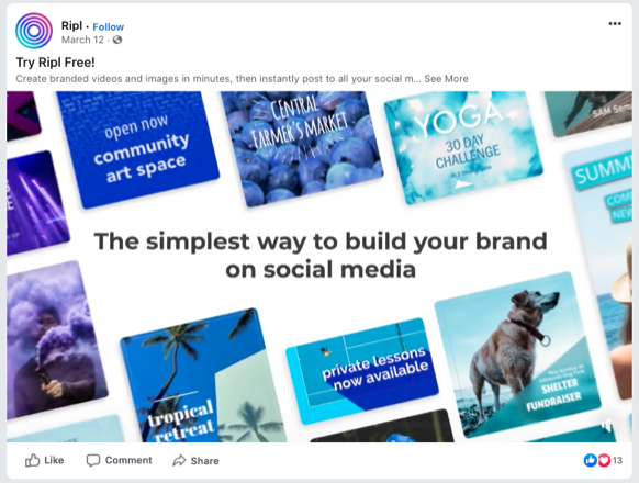 Ripl Facebook Video Ad Example