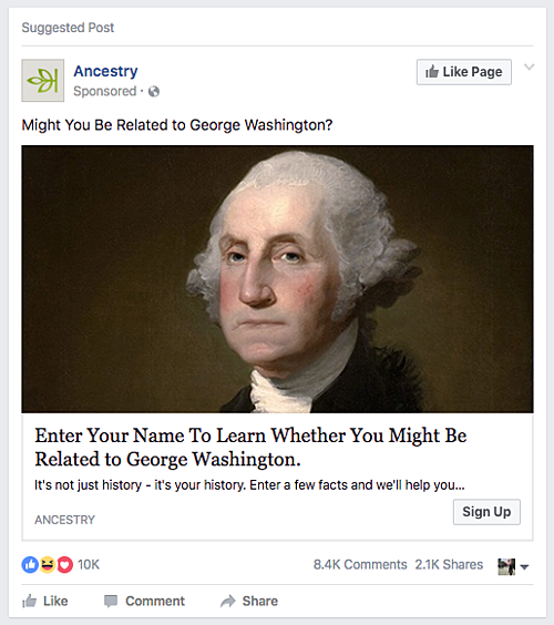 cool offers ancestry