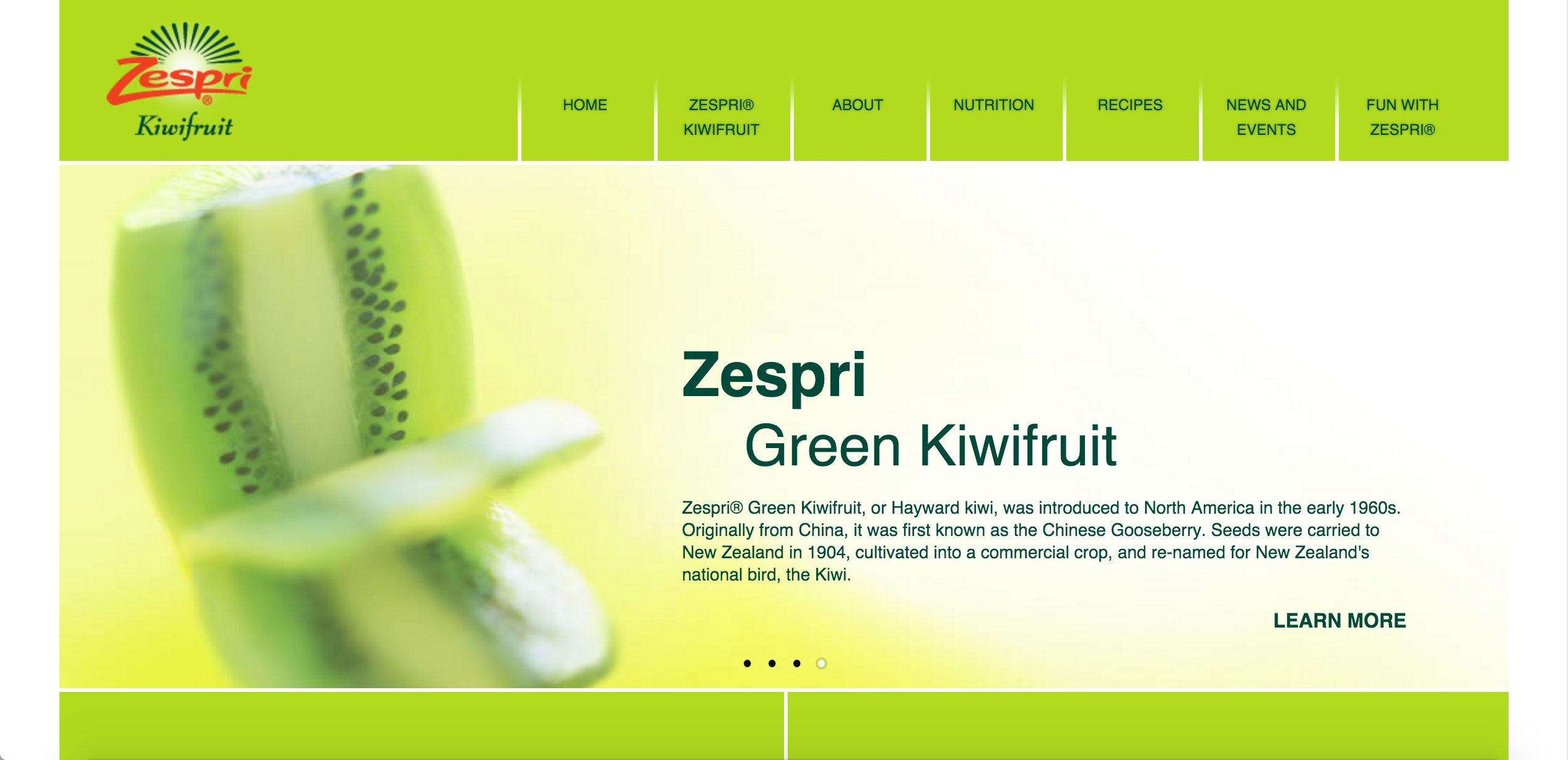 brands-that-became-words-kiwi.png