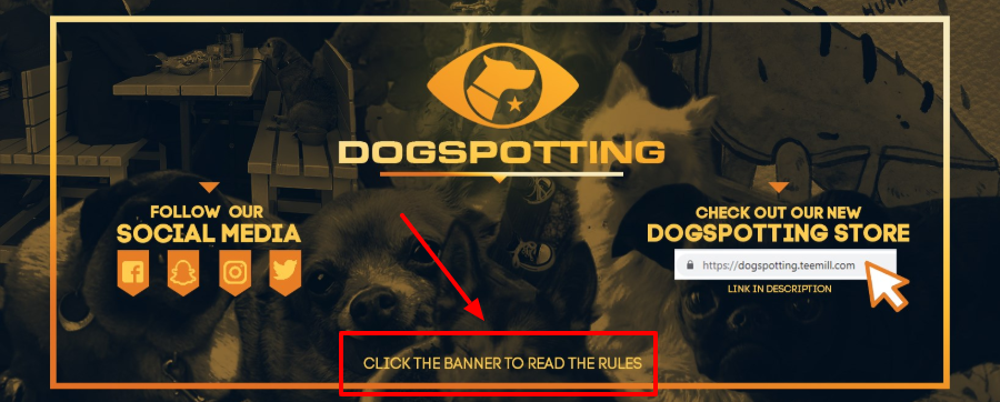 dogspotting-cover-image