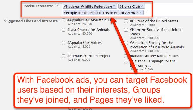 facebook_targeting.png