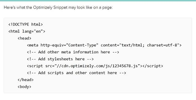optimizely_snippet_code.jpg