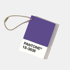 pantone-color-of-the-year-2018-shop-ultra-violet-coy-2018-chip-drive