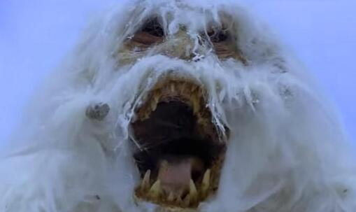 star-wars-wampa-attack
