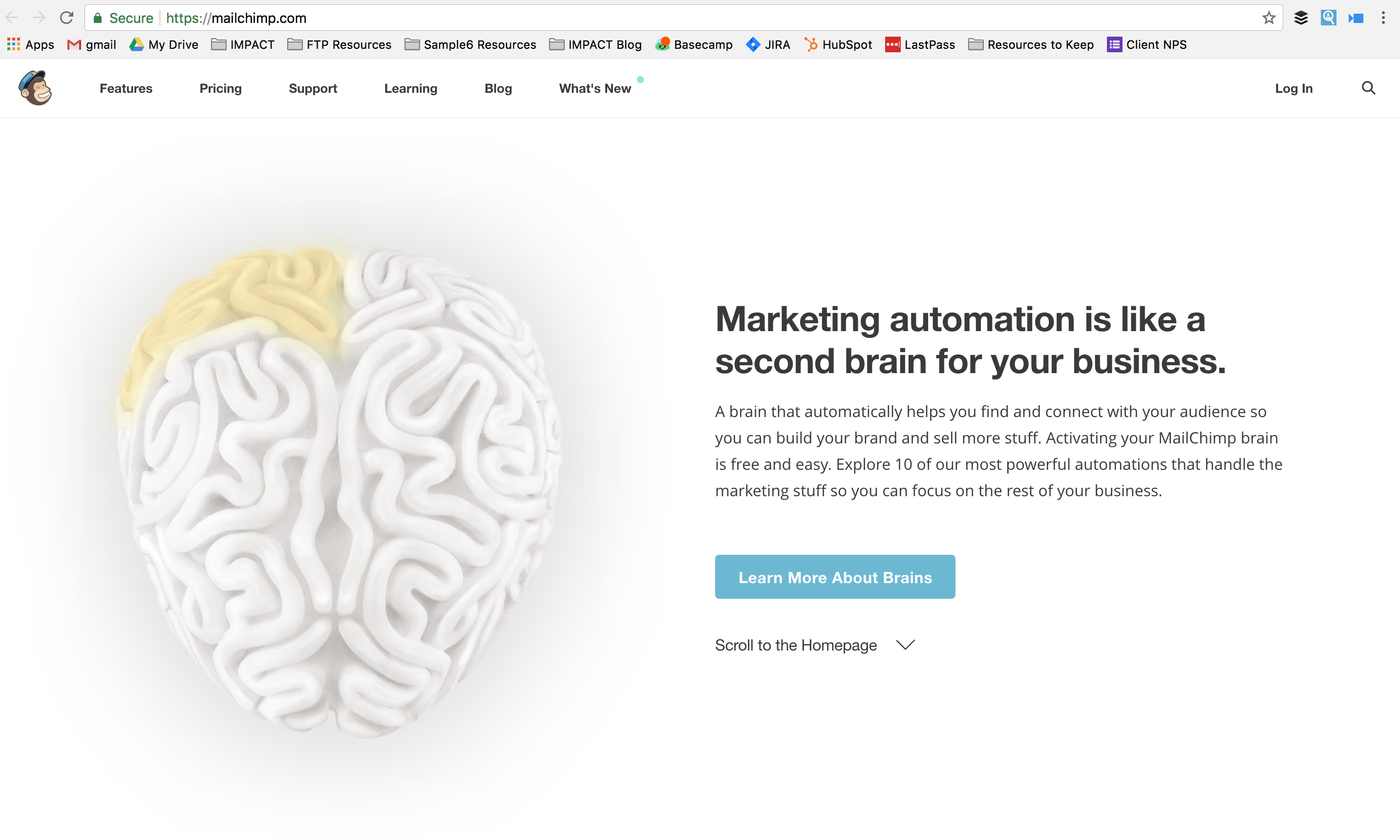 mailchimp-homepage.png