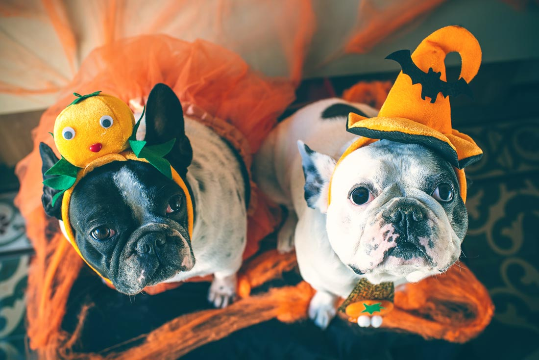 35 Work-Friendly Halloween Costumes for Marketers Who Waited 'Til The Last Minute