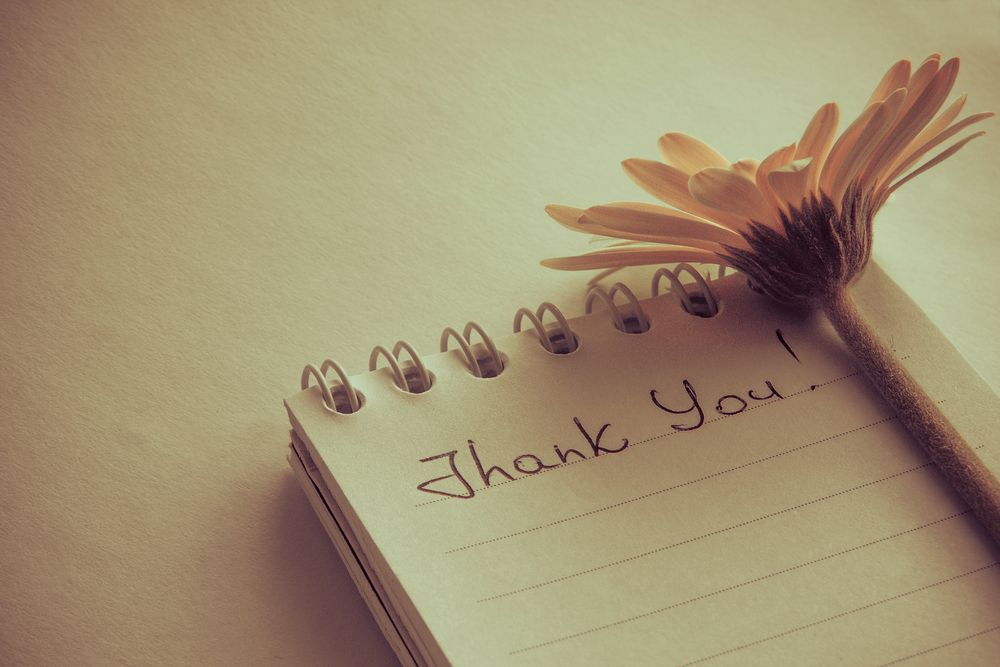 10 Thank You Page Examples That Totally Nailed Lead Nurturing